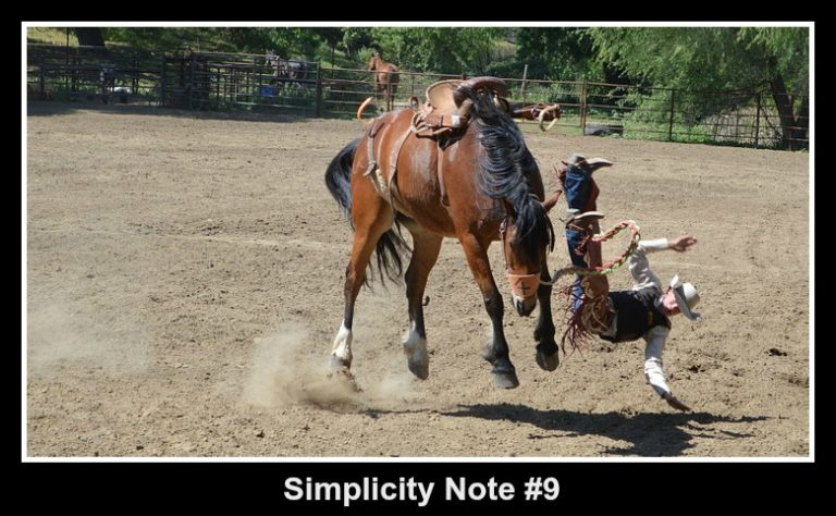 Simplicity Note #9 – What to Expect If You Ignore Problems