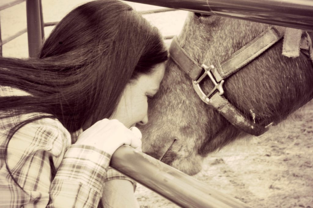 woman touching faces with horse . reset your relationship with your horse