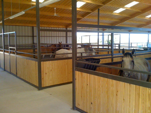 Barndominium with horse stalls, high ceilings, and gorgeous setup. Benefits. Lifestyle.