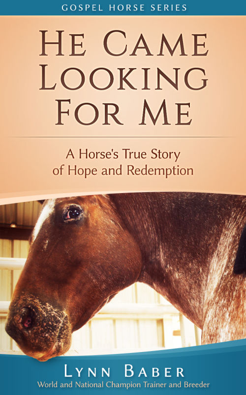 "Book cover of ""He Came Looking for Me—A Horse's True Story of Hope and Redemption"" by Lynn Baber. Title and close up of Horse's head."